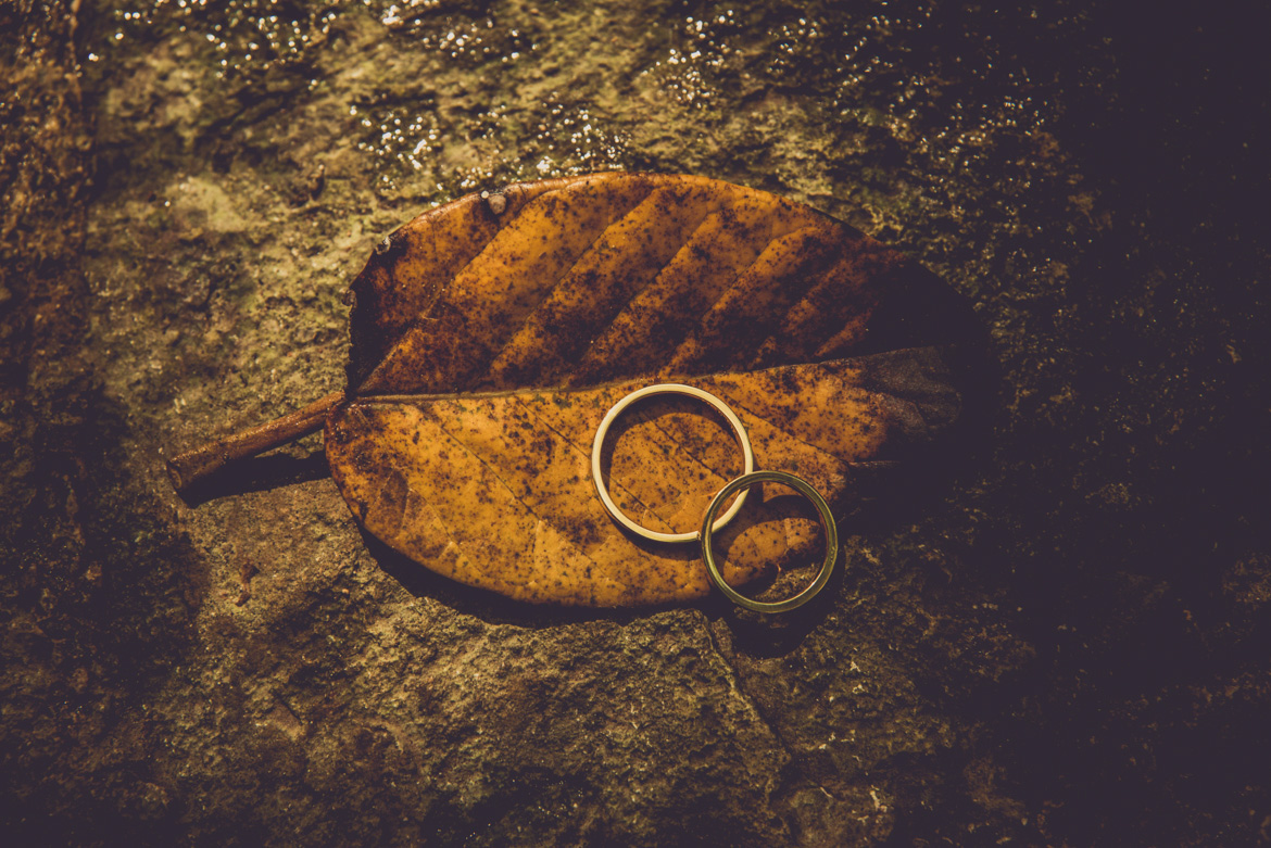 Detail shot of wedding bands on a leaf for destination wedding